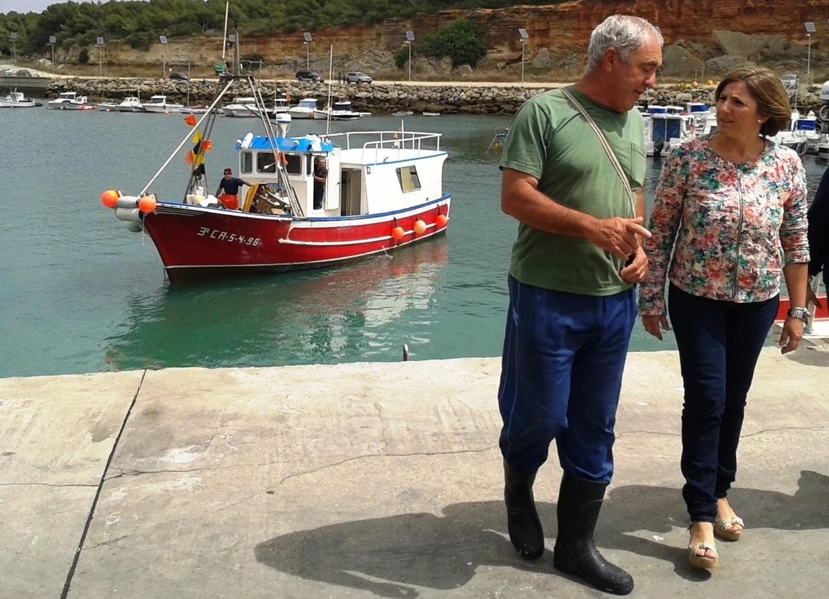 PSOE reclama un aumento de la cuota de atún rojo para las almadrabas y para la flota artesanal