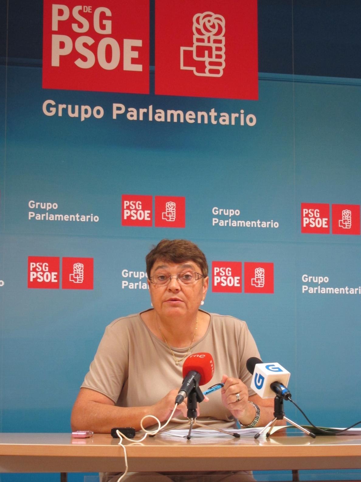 (AM) El PSdeG revela que una empresa de Pachi Lucas aparece en la lista de «proveedores de PP» en la campaña de 2009