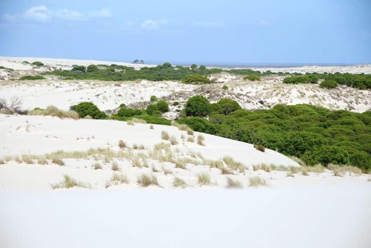 UGT y CCOO reclaman al Senado que no disminuya la protección de los Parques Nacionales