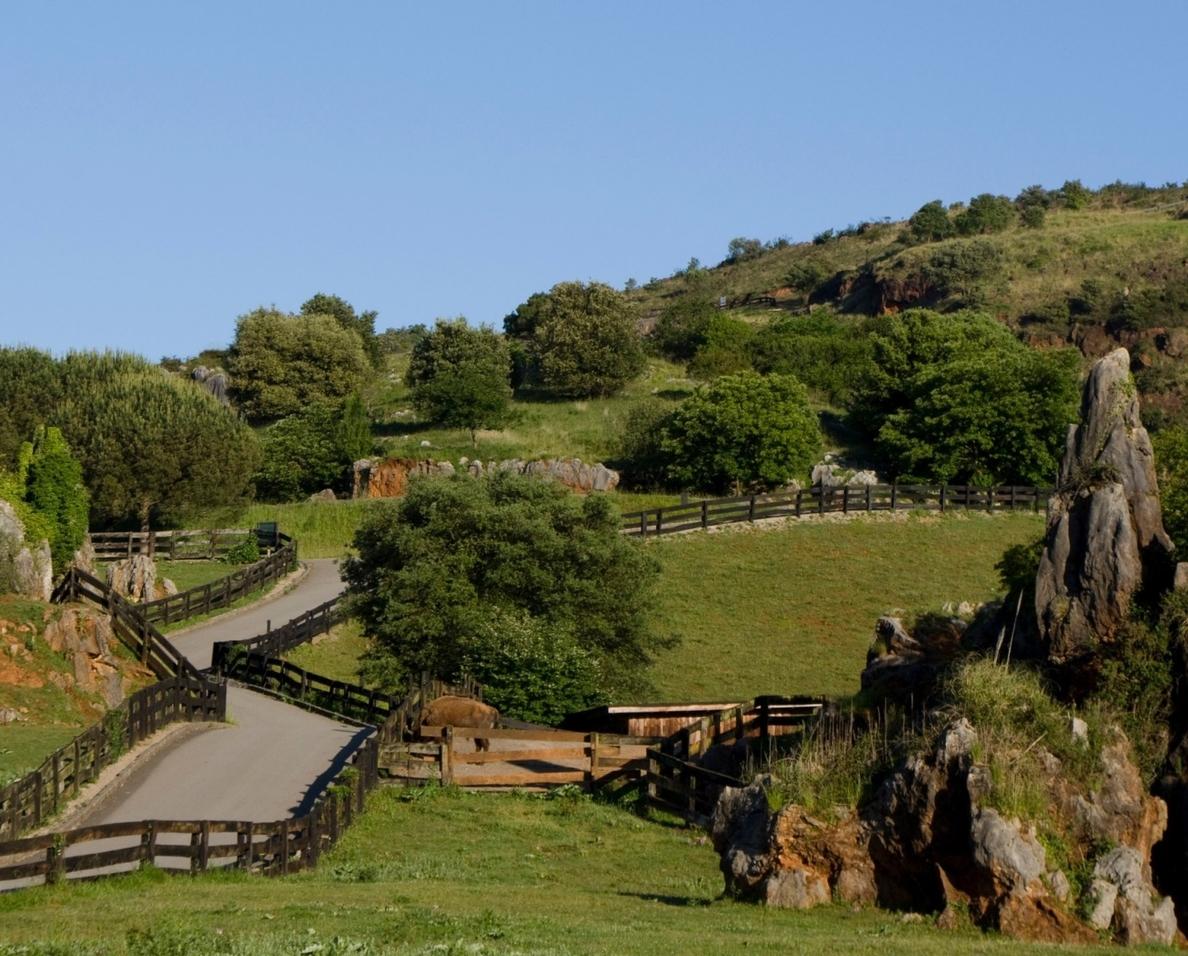 Cantabria promocionará la región en la WTM de Londres