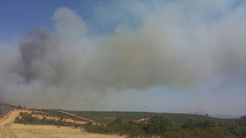 Soriano informará el martes en las Cortes sobre los incendios forestales de Bustares y Aleas, en Guadalajara