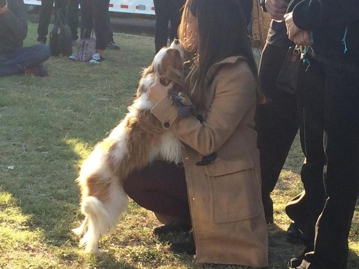 La enfermera de Dallas que superó el ébola se reúne con su perro tras dar ambos negativo