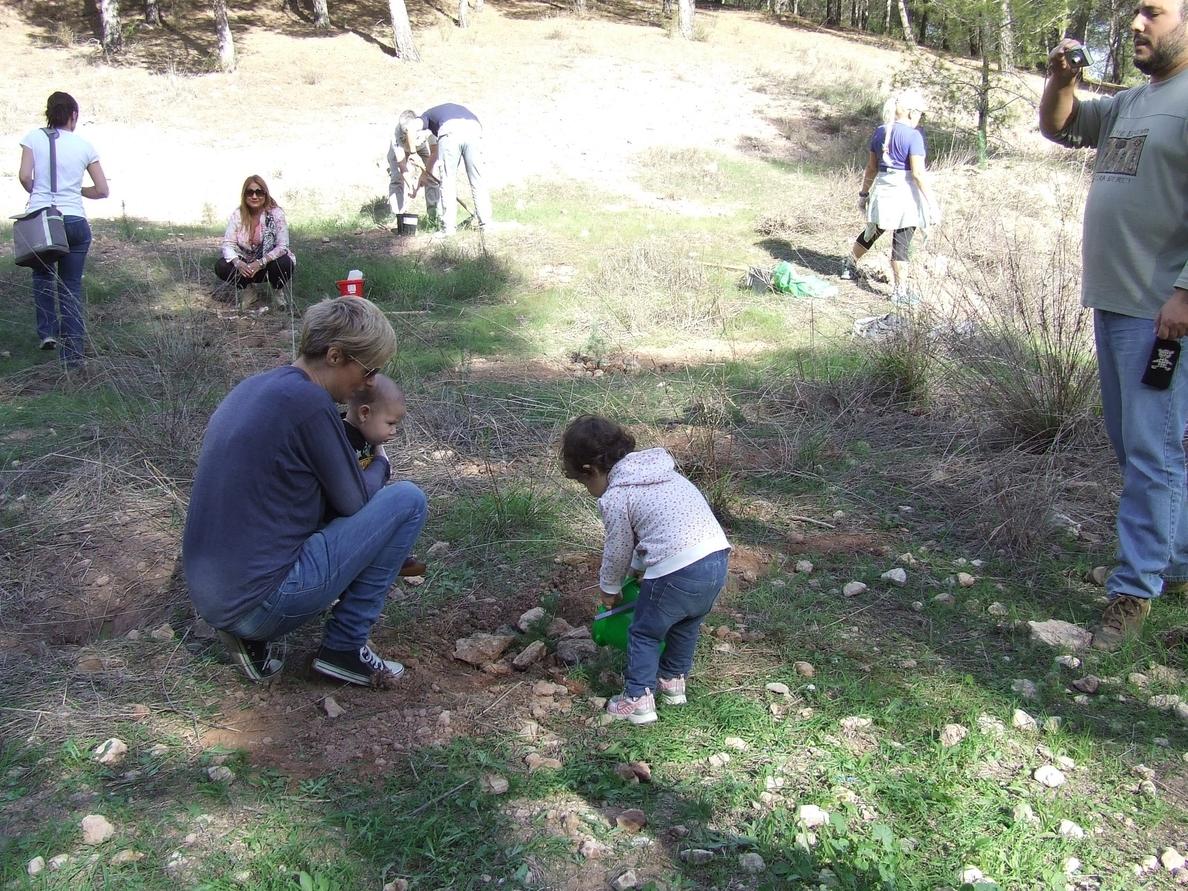 Quince familias plantan pinos en El Valle dentro de la actividad »Tener un hijo y plantar un árbol»