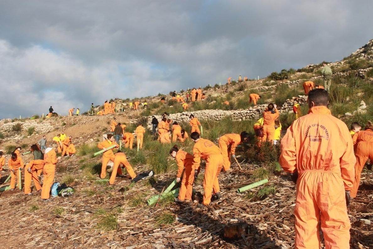 Company asiste a la jornada de reforestación de la campaña »Tot(s) per sa Serra!»