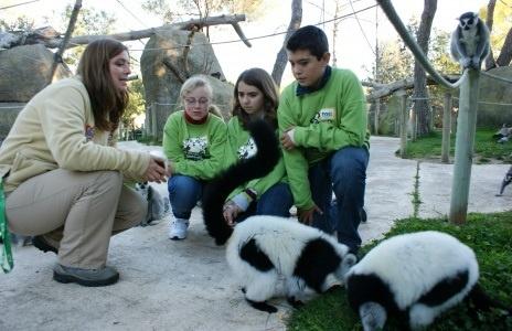 Los campamentos de Zoo Aquarium de Madrid se visten de Navidad