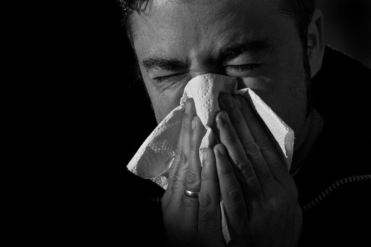¿Cómo diferenciar el catarro de la alergia al polen?