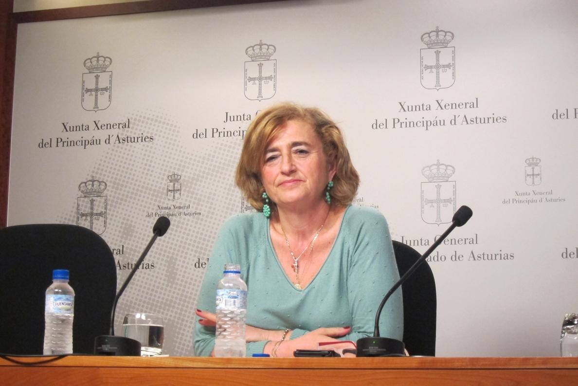 EL PP dice que el Gobierno asturiano está «en deuda» con las entidades del tercer sector