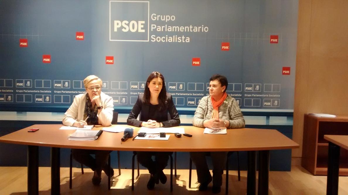 El PSOE pide el indulto para una mujer maltratada condenada a prisión por incumplir el régimen de visitas