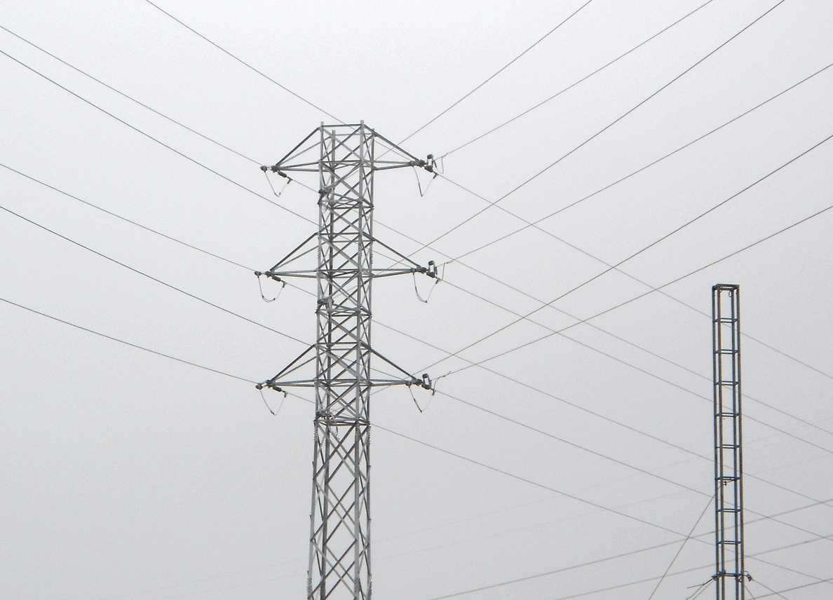 Endesa, reconocida como uno de los proveedores líderes del mundo en su acción contra el cambio climático