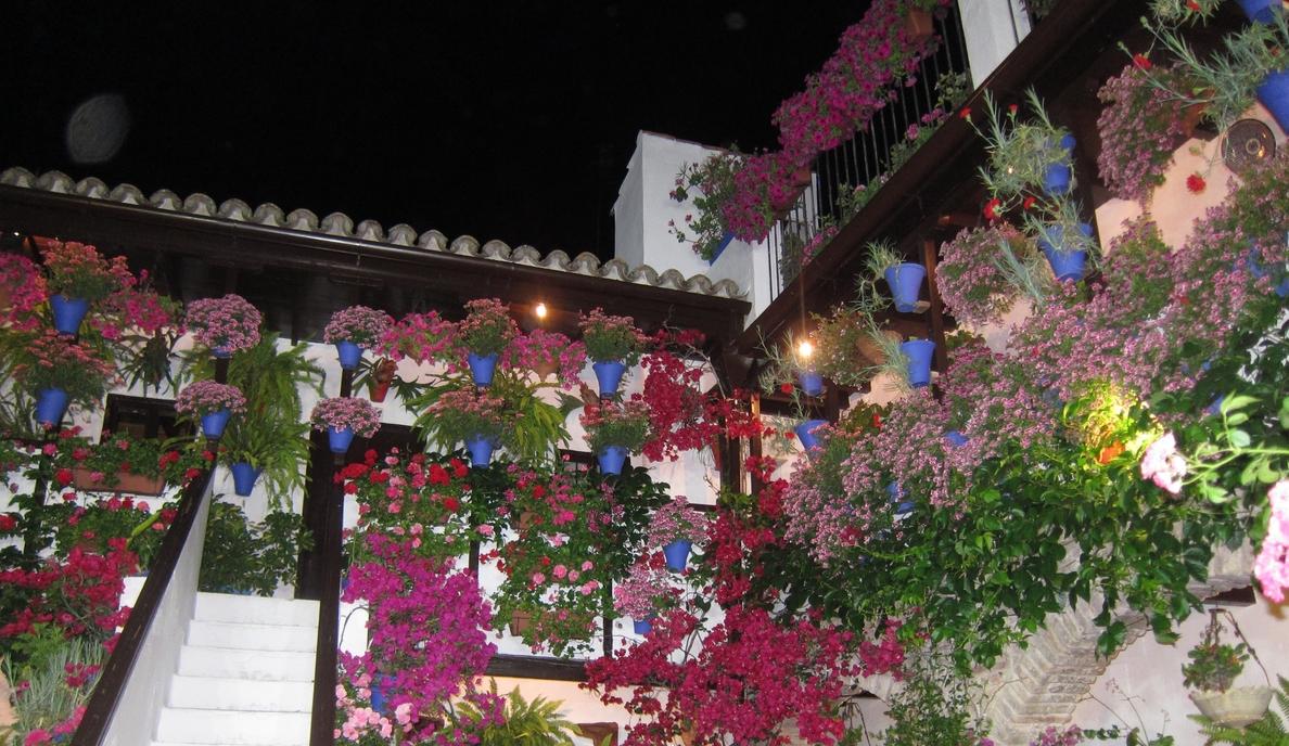 Los Patios de Córdoba reciben más de 167.600 visitas durante el primer fin de semana del concurso