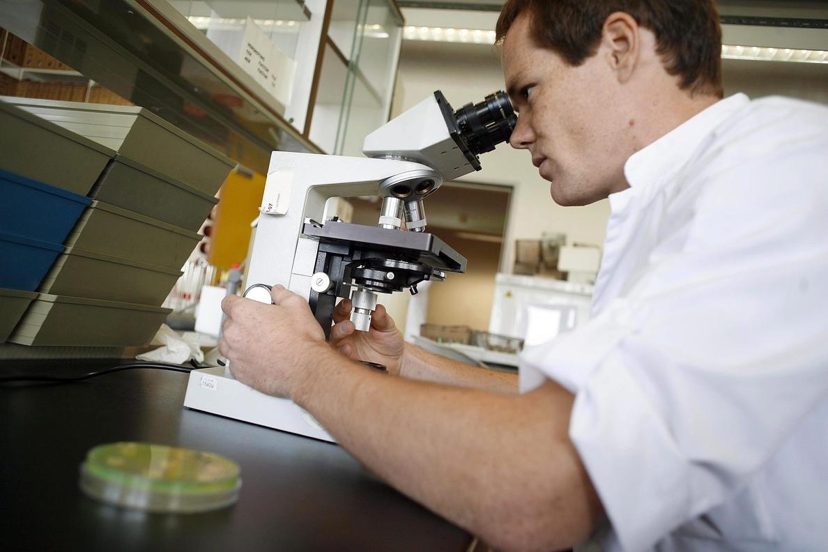 La medicina forense microbacteriana posibilita rastrear a personas por los microbios de sus artículos personales