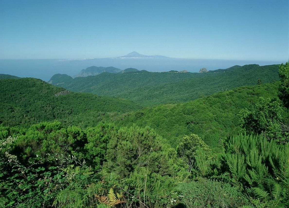 La Gomera, Gran Canaria y Lanzarote, entre las islas mejor valoradas para descubrir este verano