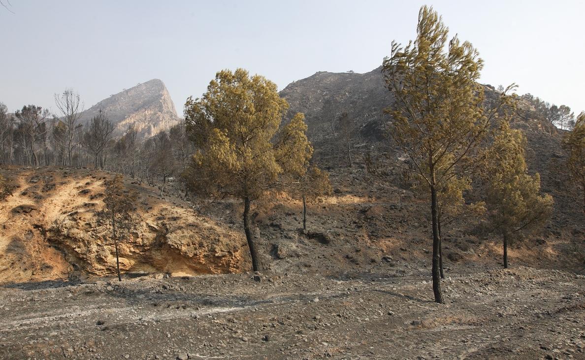Un total de 244 medios y 2.600 personas conforman el dispositivo de lucha contra incendios de este verano en C-LM