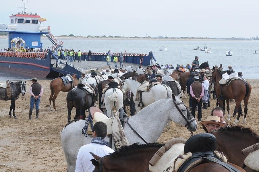 Mueren ocho caballos en El Rocío y la Junta destaca su trabajo para evitar maltrato animal