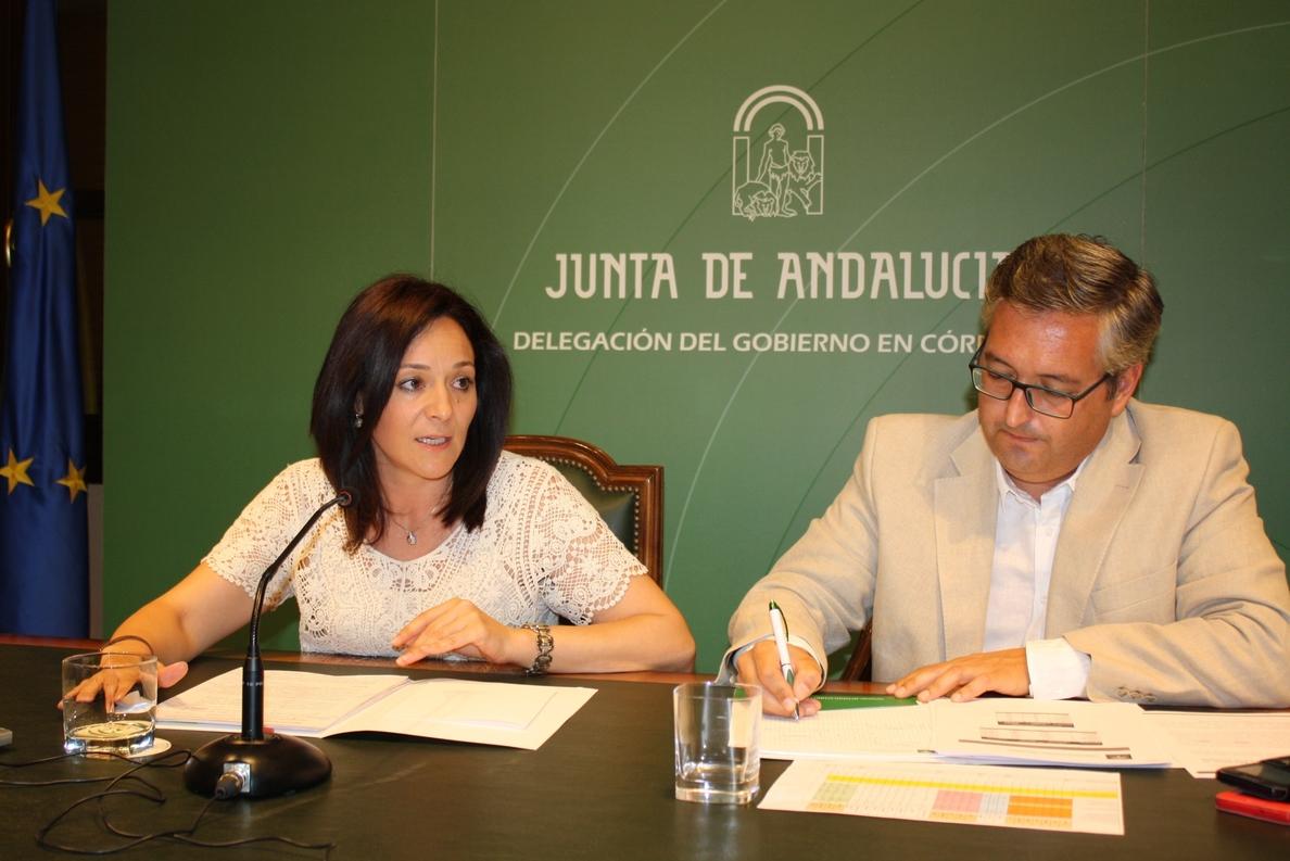 La Junta ha colaborado en el primer semestre del año a la creación de 1.272 empresas en Córdoba