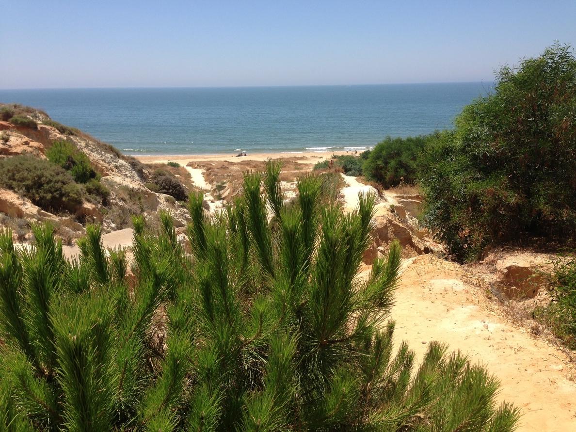 Las aguas de baño de las playas andaluzas presentan unas adecuadas condiciones sanitarias