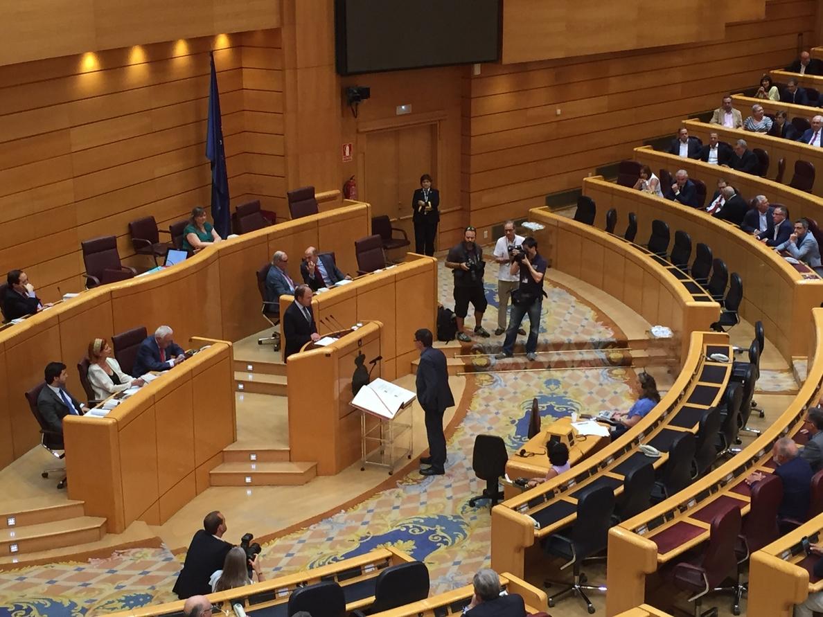 Bauzá y Antich acatan la Constitución en el pleno del Senado de este jueves