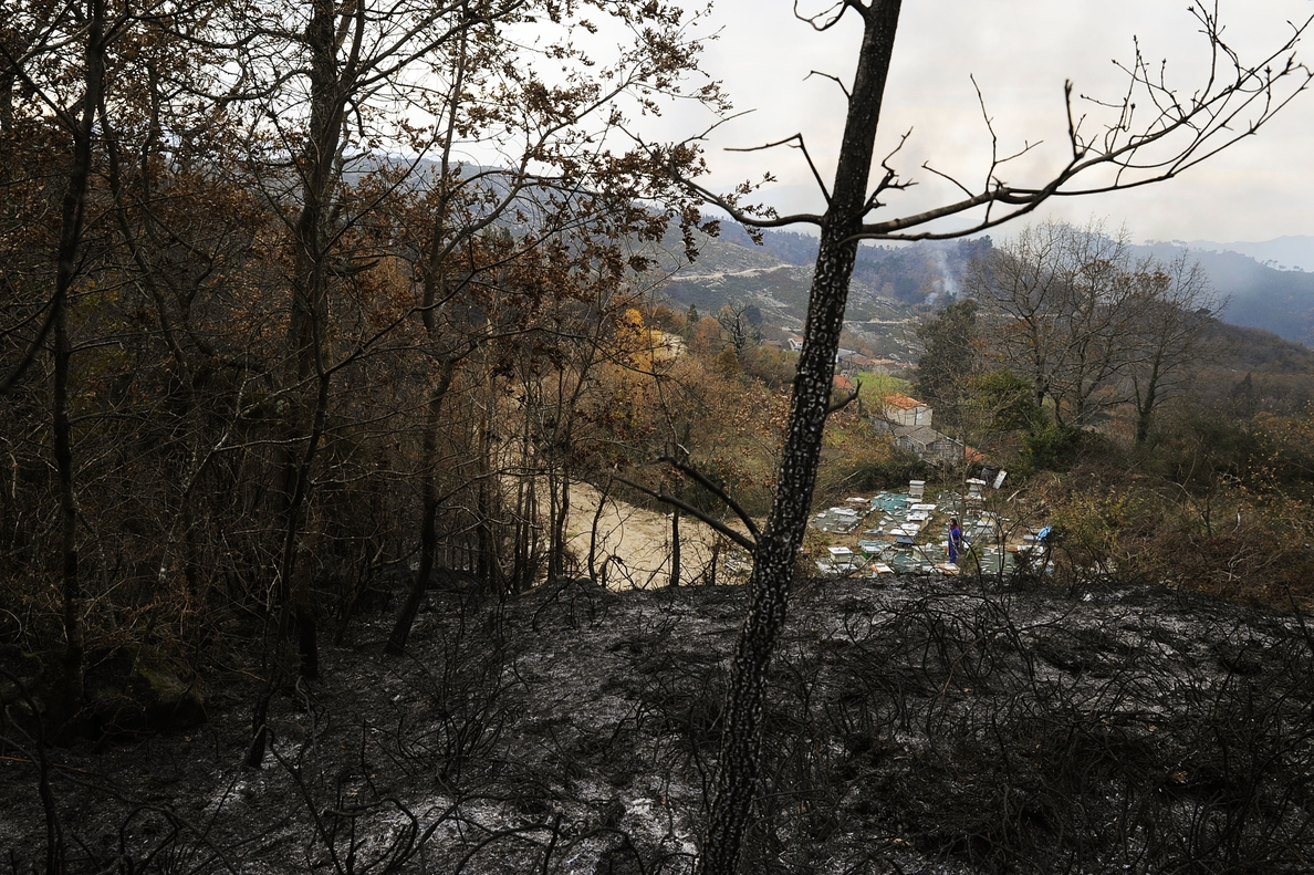 Estabilizado el incendio en el parque natural del Xurés con 150 hectáreas quemadas
