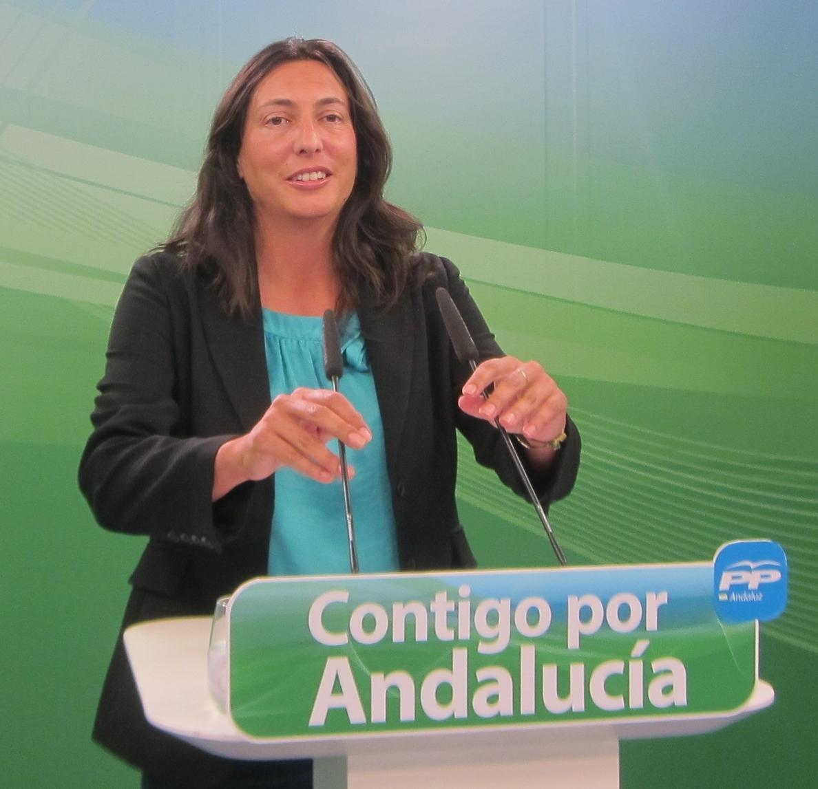 PP-A reclama que el Presupuesto de la Junta de 2016 no recoja los «recortes que aplica desde 2012» a empleados públicos