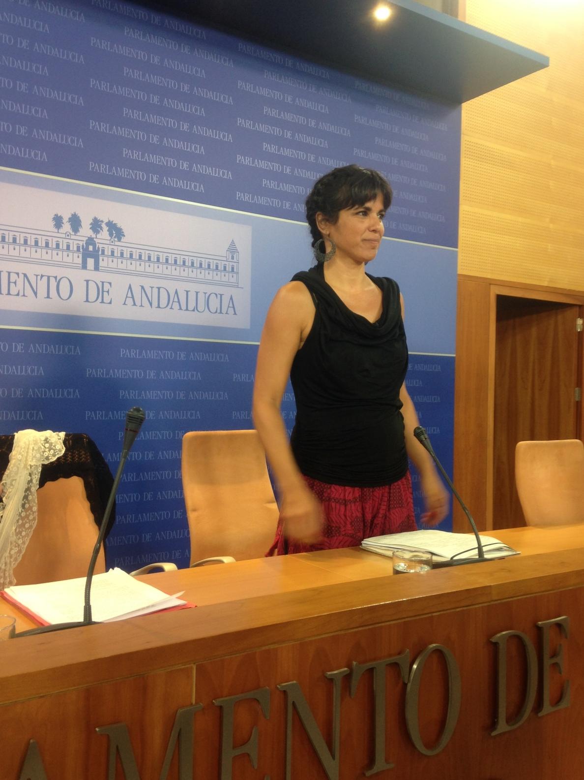 Rodríguez (Podemos) critica «la falta de respeto» de la Junta hacia la ciudadanía al rechazar la ILP de renta básica