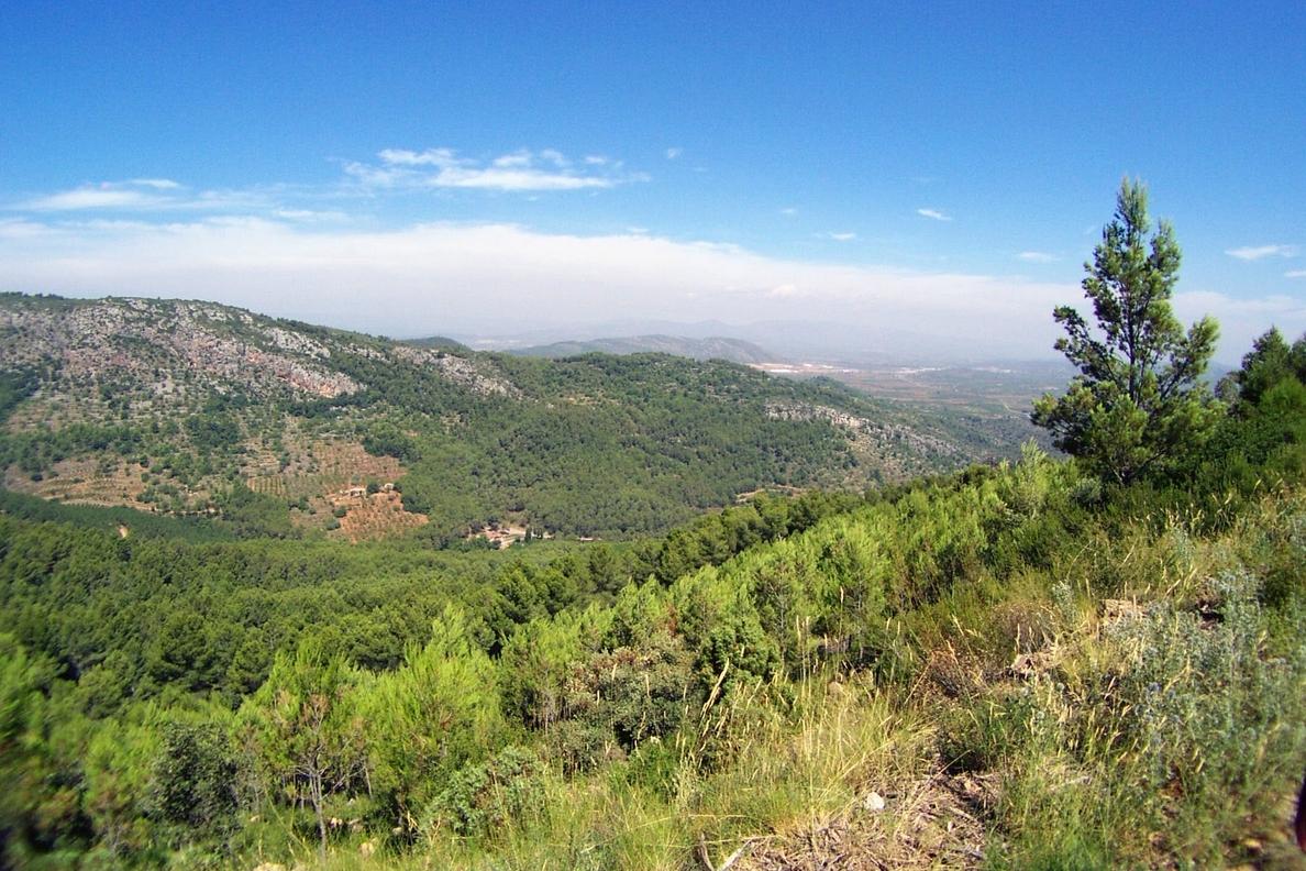 Los parques naturales de la Comunitat Valenciana ofrecerán este verano cerca de 150 actividades lúdicas
