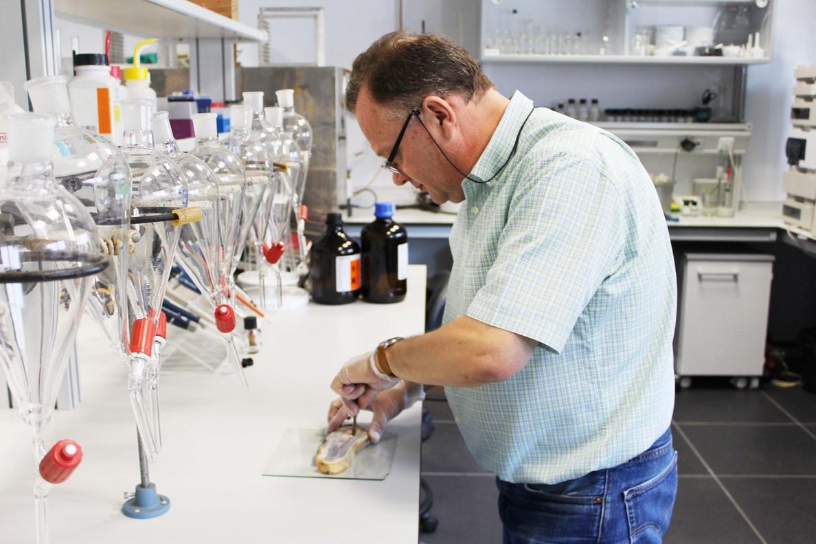 Desarrollan modelos matemáticos para predecir el punto óptimo de curación del jamón ibérico