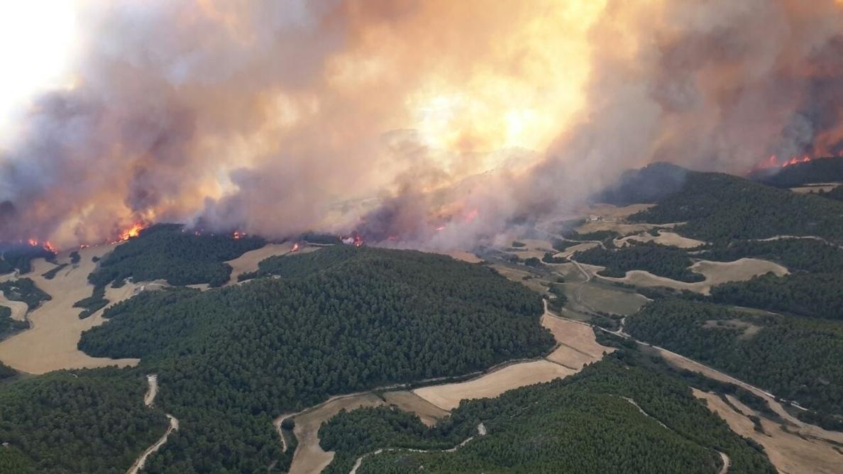 Ingenieros de Montes recuerdan que el monte «no arde solo» y apuestan por devolverle su rentabilidad
