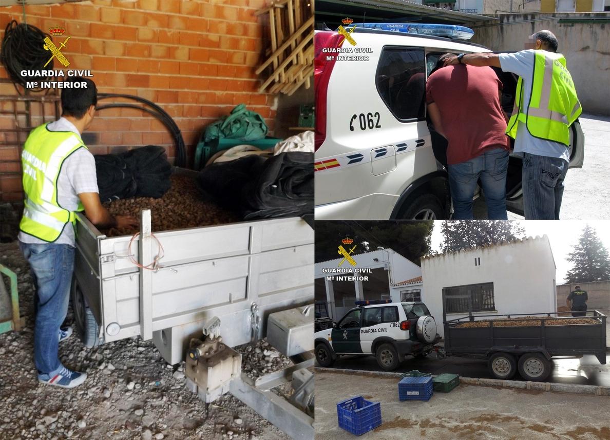 Cae un grupo delictivo con seis detenidos con 10.000 kilos de almendra robada, valorada en 50.000 euros
