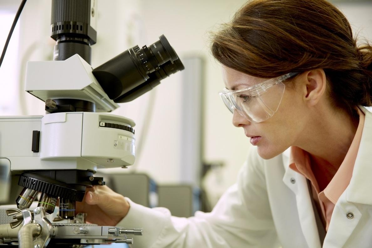 Científicos hallan un conjunto de genes esenciales para la viabilidad celular