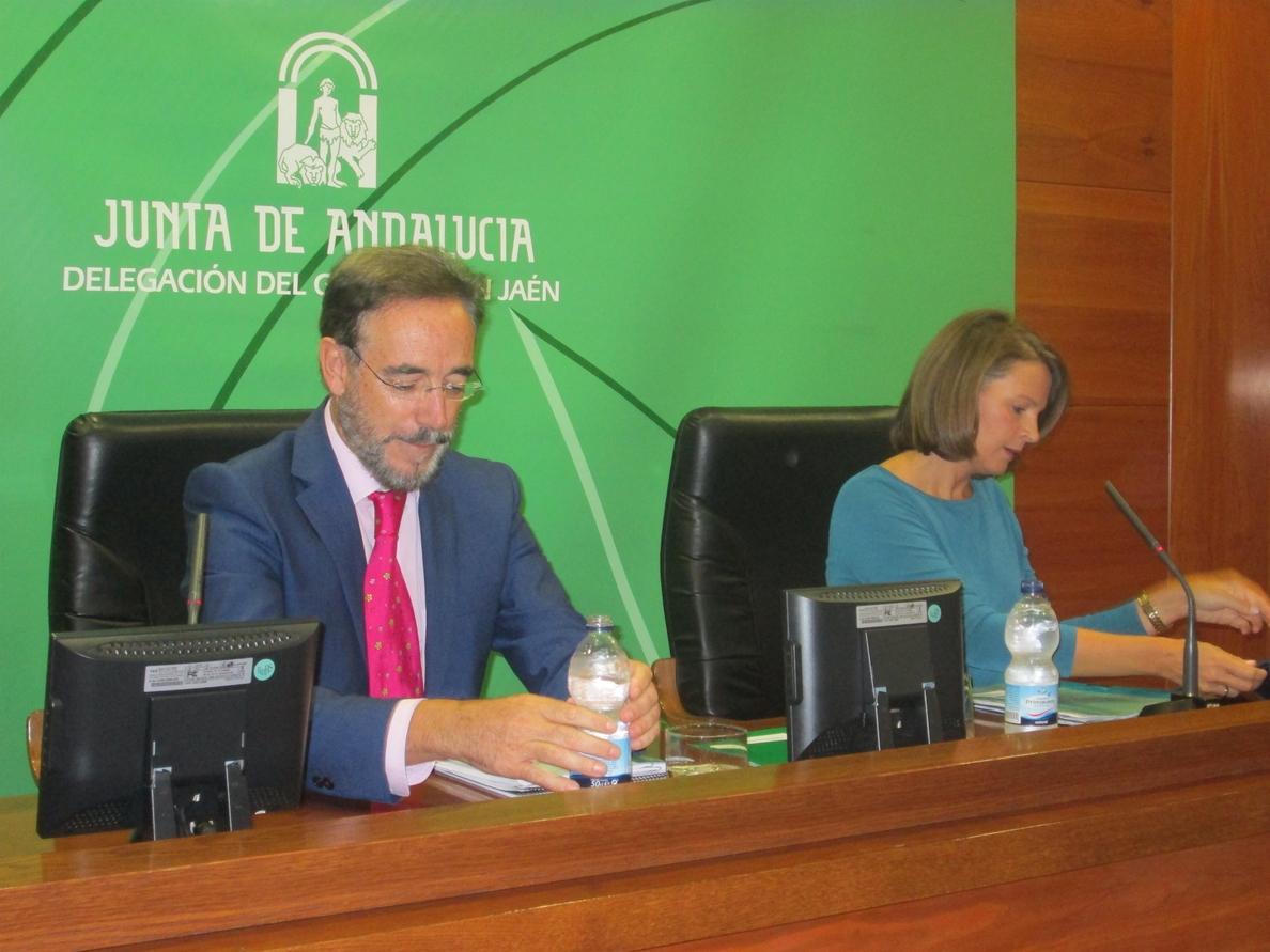 Cobo dice que los presupuestos «redoblan esfuerzos y recursos» para combatir el desempleo en la provincia