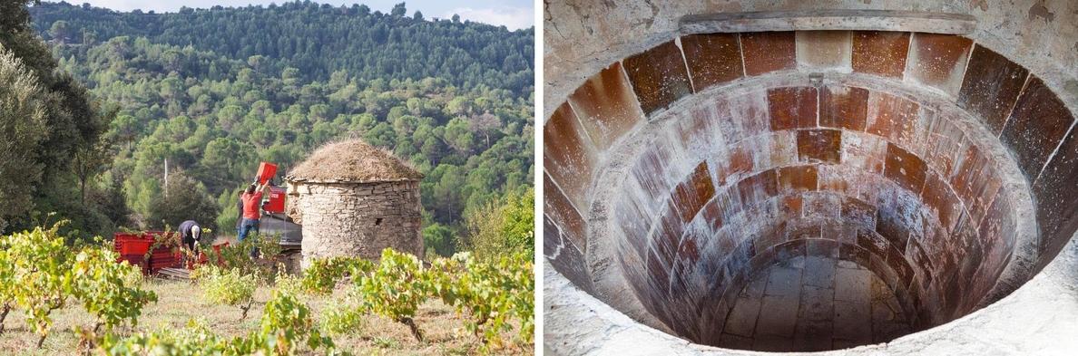 Roqueta Origen recupera un vino elaborado en cuba de piedra seca