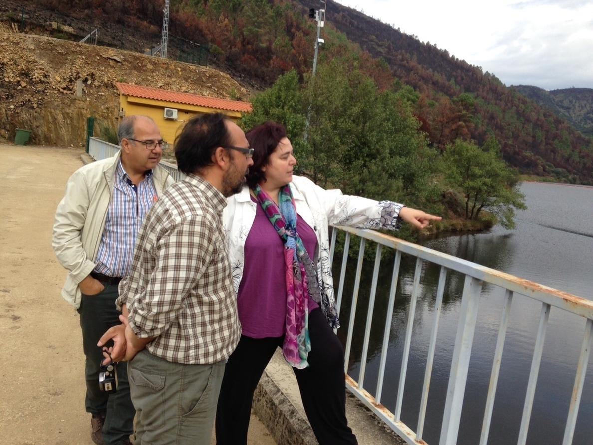 La Junta sacará la madera quemada que aún permanezca en las fincas privadas de Sierra de Gata