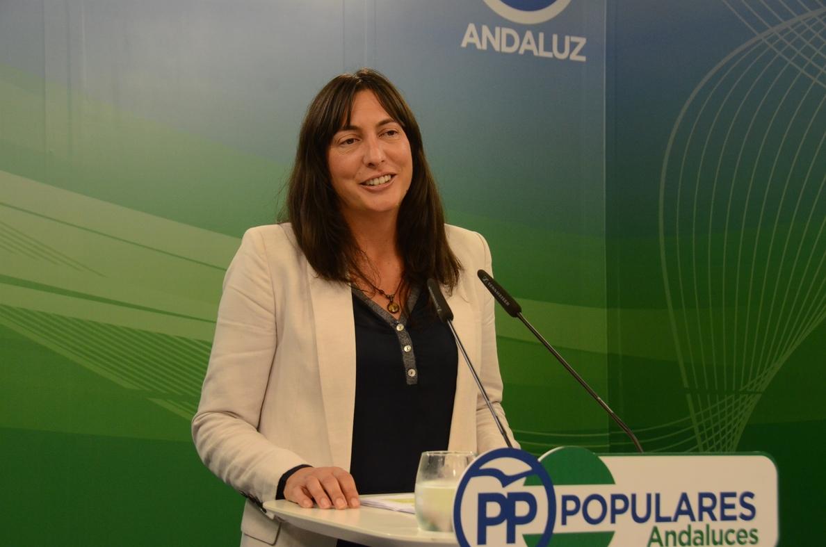 PP-A critica los presupuestos «irreales» de la Junta y apunta a C»s como «corresponsable de sus déficit y carencias»