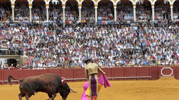 Los toros pueden volver a Cataluña: el Constitucional anula su abolición