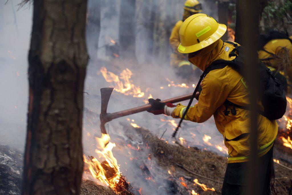 Ayuda internacional llega a Chile para combatir incendios forestales