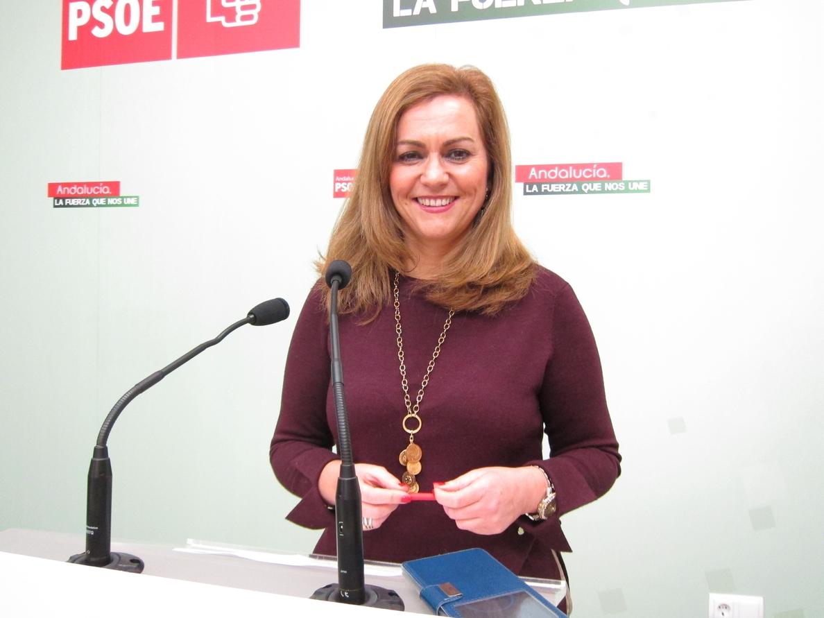 El PSOE dice que va «calando» el mensaje de que, pese a sus problemas internos, da «normalidad a las instituciones»
