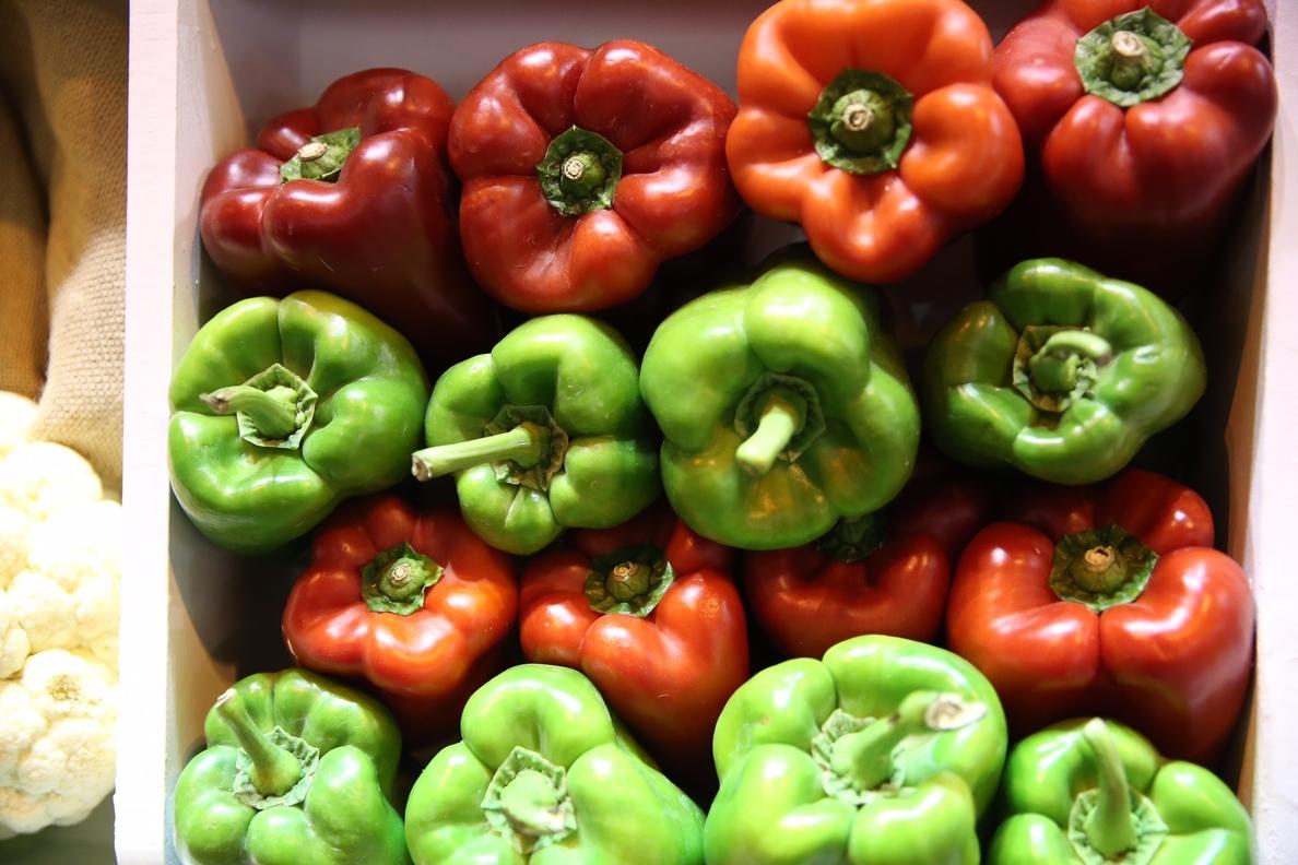 Verduras, ¿frescas o congeladas?