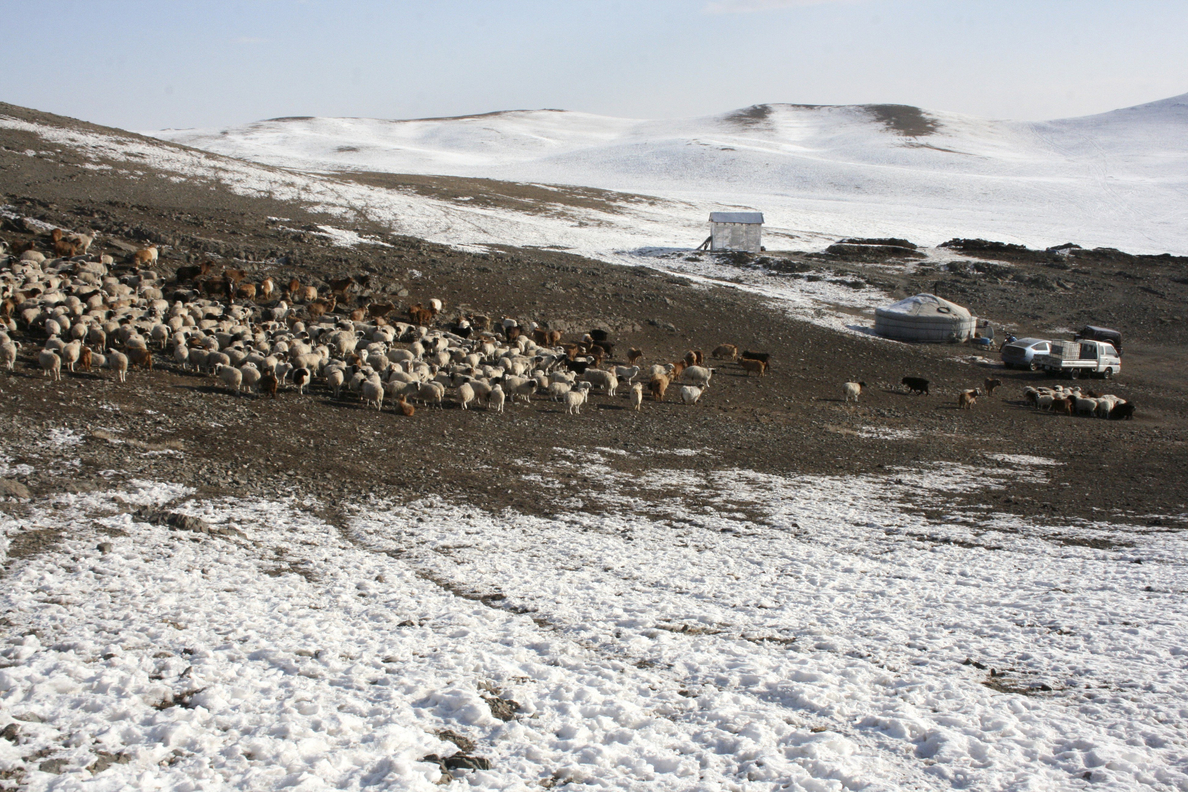 El futuro de Mongolia y de sus nómadas, en peligro