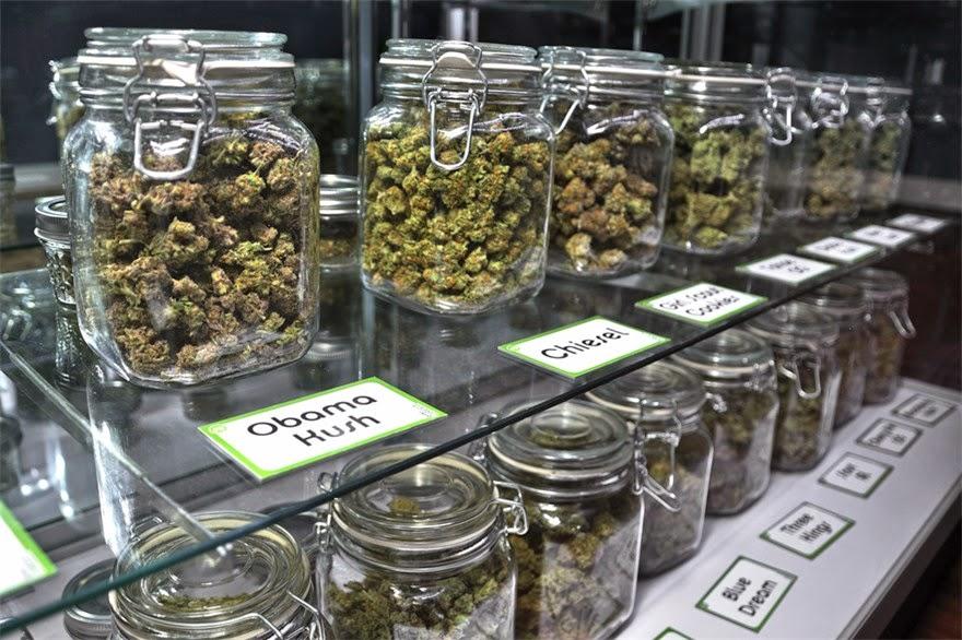 Cataluña legaliza el cannabis para que seas «libre de desarrollarte como persona»