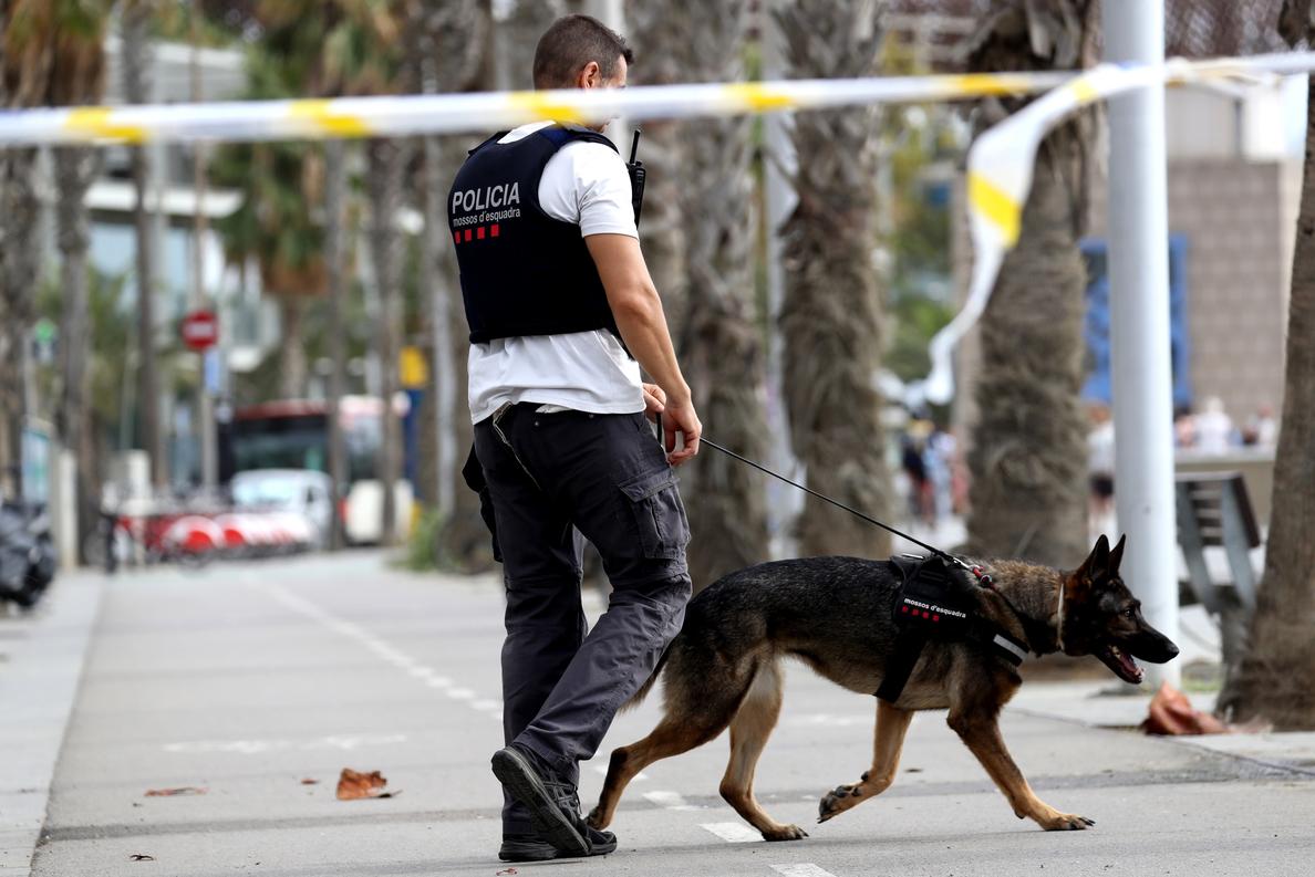 Los Mossos rastrean de madrugada Manlleu y Ripoll en busca del terrorista huido