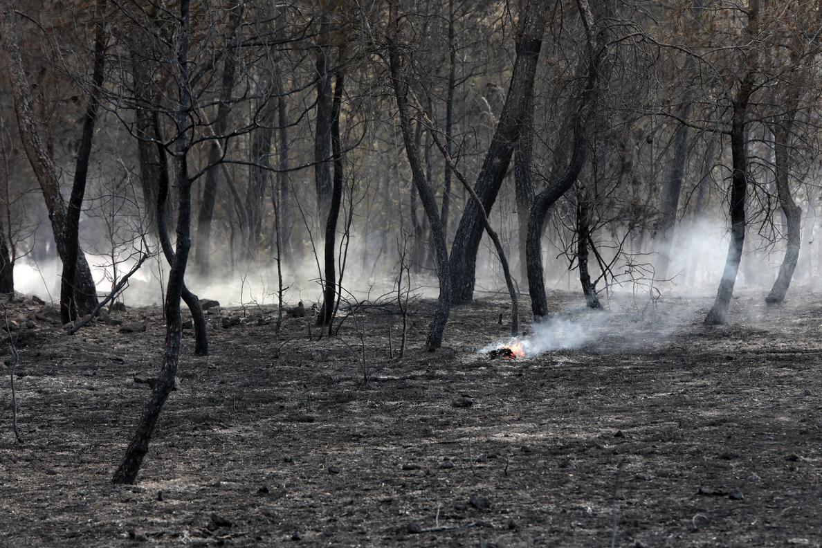 España arde: 75.026 hectáreas quemadas, el peor dato de últimos cinco años