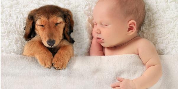 Más de 1.000 niños nacen en Año Nuevo en España
