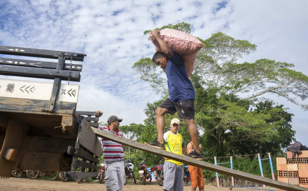 El cambio climático y la deforestación amenazan a los indígenas del Amazonas boliviano