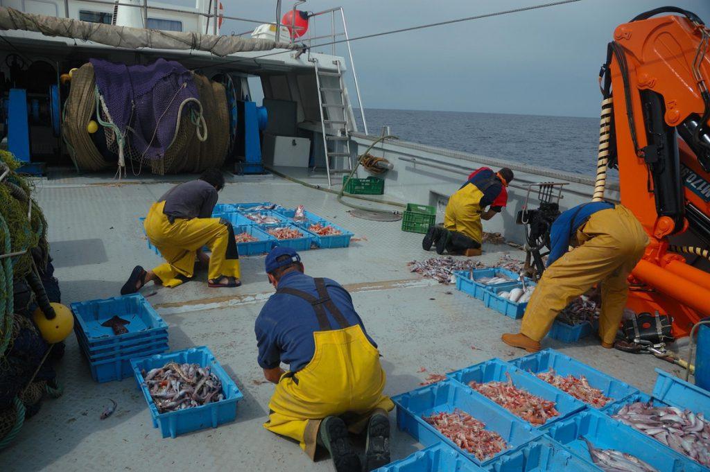 La flota cántabra no descarta seguir al País Vasco y pedir al Ministerio la parada biológica para algunas especies