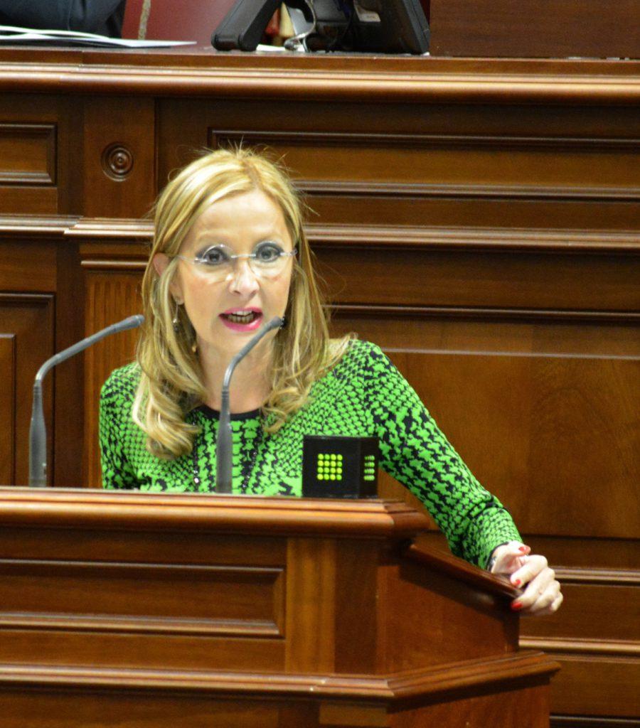 El PP canario solicita la bajada del IGIC y que el 10% del presupuesto se destine a políticas sociales