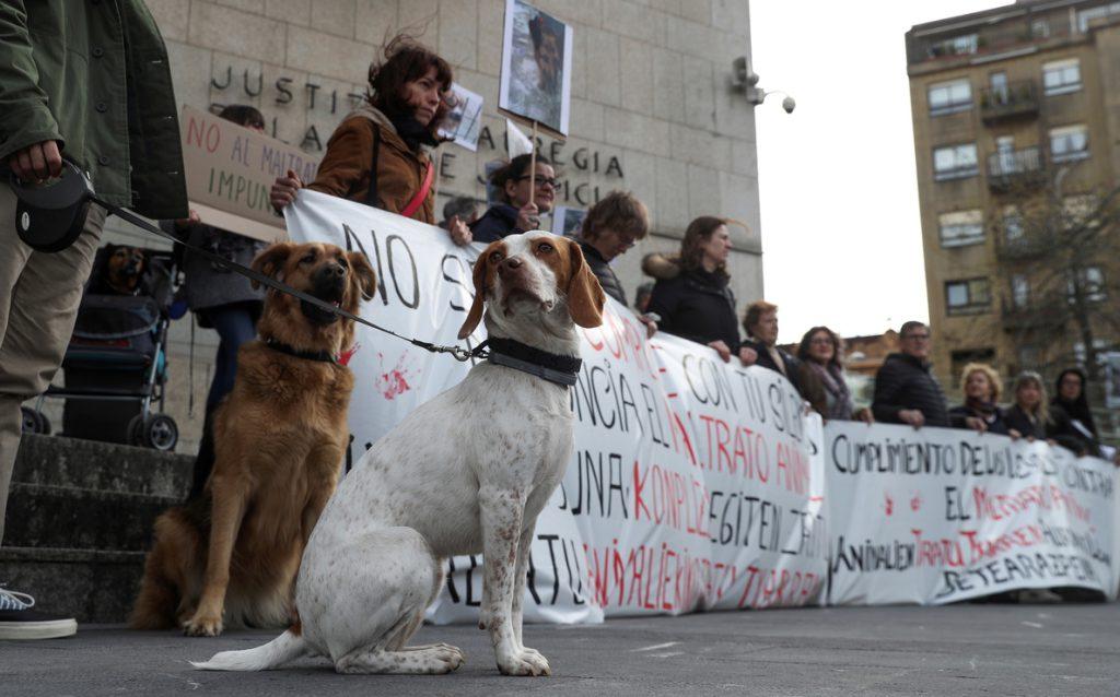Abogados proponen un turno de oficio para dar asistencia jurídica a animales