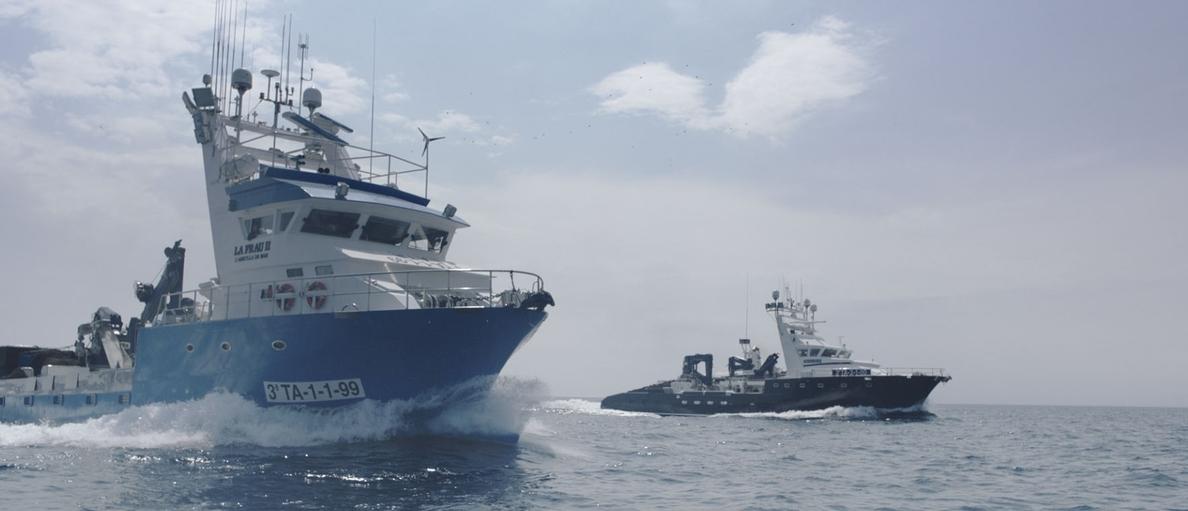 Grupo Balfegó inicia este sábado la campaña para pescar 1.872 toneladas de atún rojo