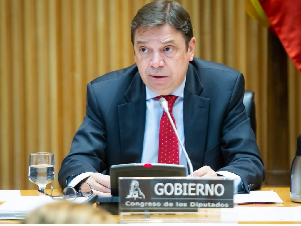 Planas se reunirá con el comisario europeo para llevar ante la OMC los aranceles a la aceituna de mesa