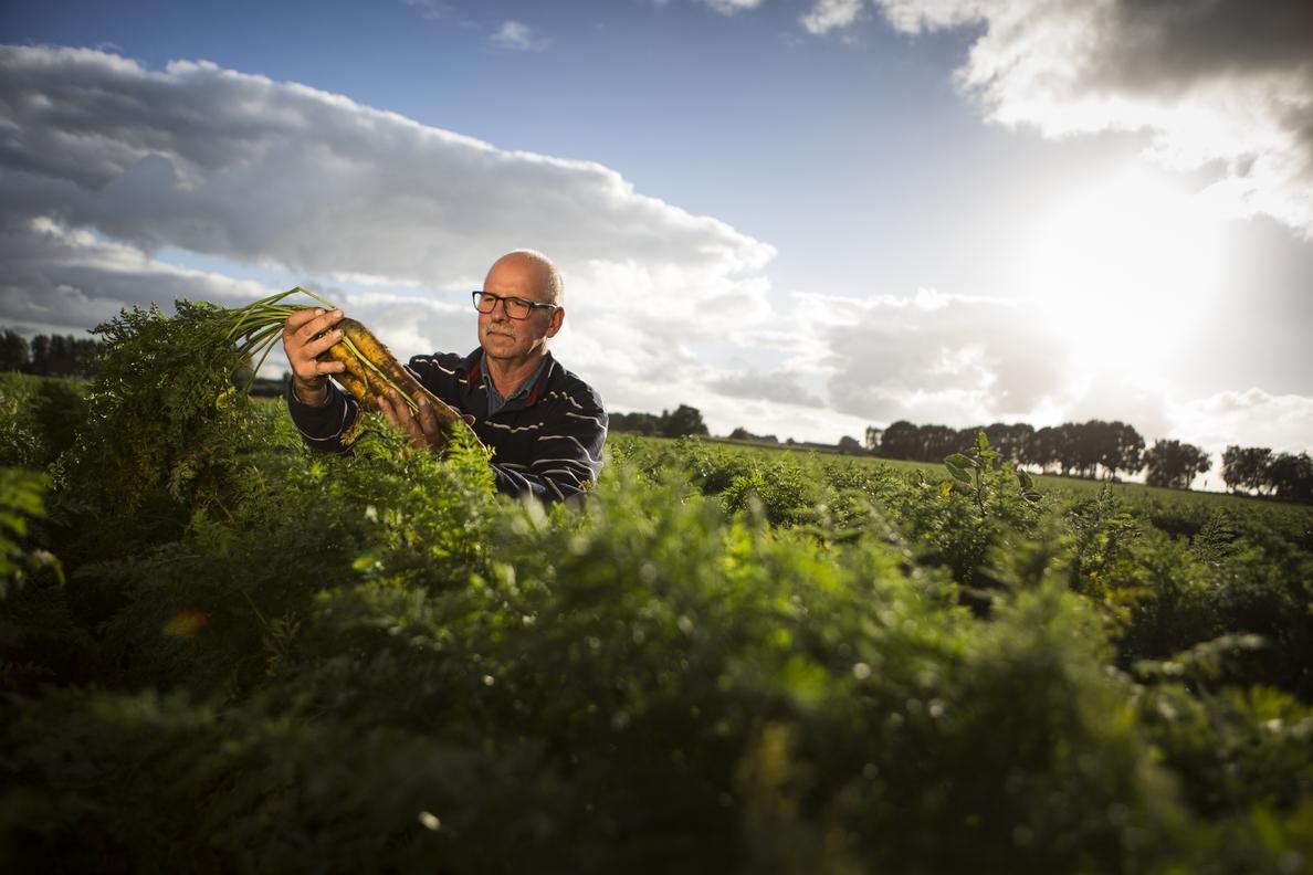 Planas: «El sector agroalimentario será un puntal clave en la recuperación económica»