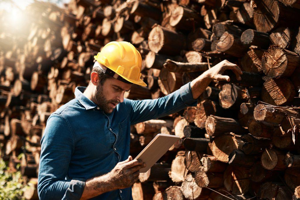 Minsait (Indra) mejora la seguridad y productividad en el ámbito laboral de la industria forestal